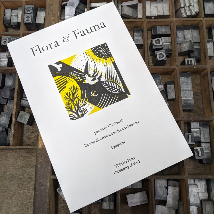 A white prospectus flyer resting on a case of type. It says Flora & Fauna, poems by J.T. Welsch, linocut illustrations by Joanna Lisowiec. A prospectus. Thin Ice Press, University of York. It includes a linocut print in black, yellow, and white of a bird flying through branches.